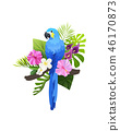 tropical bird composition 46170873