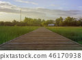 Wood bridge made of bamboo in the rice field. 46170938