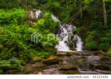 Waterfall in a creek 46182896