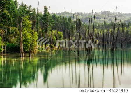 Blue Pond 46182910
