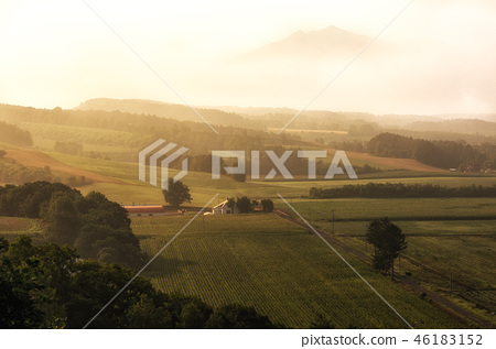View of the farm 46183152