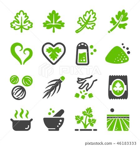 coriander icon 46183333