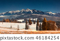 Landscape of winter mountains at night 46184254