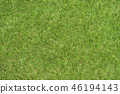 backdrop background grass 46194143