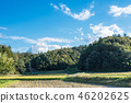 鄉村景觀 46202625