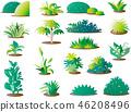 vector, vectors, herbaceous 46208496