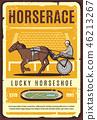 horse, harness, racing 46213267