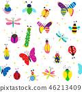 昆虫 漏洞 虫子 46213409