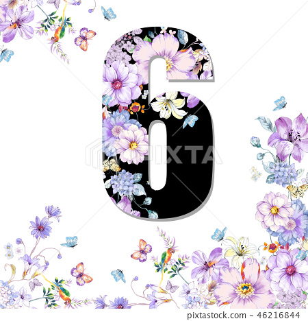 우아함으로 장미 꽃, 牡丹花, 국화, 야생화, 화초 화 숫자 46216844