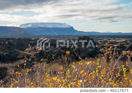 View Point at Dimmuborgir lava field 46217675