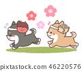 瀨戶出生的狗 46220576
