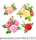 Lovely rose flower 46221333