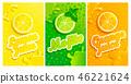fresh juice fruit 46221624