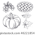 thanksgiving vector icon 46221854