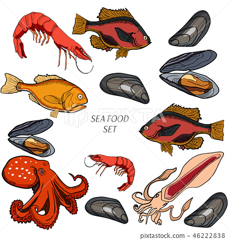 Set of colored sea food products 46222838