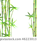 bamboo, frame, watercolour 46223013