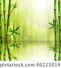 bamboo, space, frame 46223014