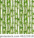 bamboo watercolor watercolour 46223018