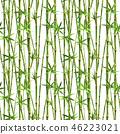 bamboo watercolor watercolour 46223021