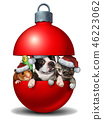 Funny Pet Decoration 46223062
