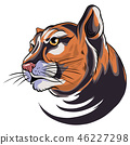 illustration of Cougar Panther Mascot Head Vector Graphic 46227298