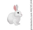벡터, 토끼, 동물 46235144