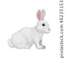 벡터, 만화, 토끼 46235153