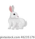 벡터, 만화, 토끼 46235176
