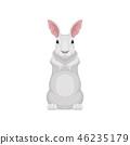 벡터, 만화, 토끼 46235179