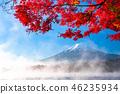 """""""山梨縣""""日本的秋/富士山和秋葉 46235934"""