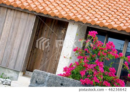 Okinawa traditional house 46236642