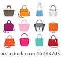 Women Handbags Collection Fashionable Set Vector 46238705