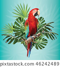 Illustration polygonal drawing green wing macaw. 46242489