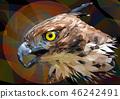 Illustration polygonal drawing Changeable Hawk. 46242491
