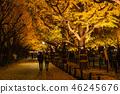 東京イ銀杏樹綠樹成蔭,金谷蓋恩 46245676