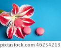 Pink macaroons and a big flower on blue background 46254213