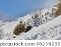 ski, skier, snow 46256233