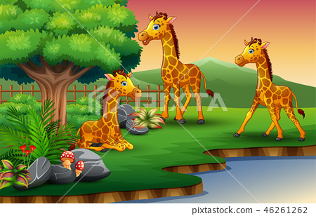 Giraffe cartoon are enjoying nature by the river 46261262