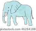동물 코끼리 46264188