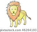 동물 사자 46264193
