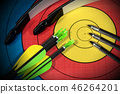 Target with Bow and Arrows - Archery Sport 46264201