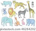 동물 세트 46264202