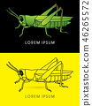 Grasshopper side view graphic vector. 46265572