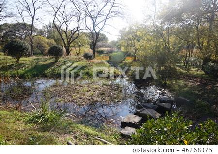 진해 내수면 생태공원2 46268075