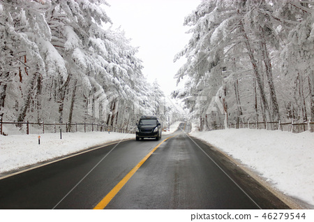 도로,한라산 가는길,설경,눈꽃,눈, 46279544