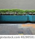 길거리의 풍경 식물 관목 벽 Street corner 46280581