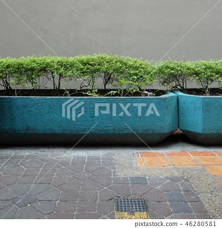 Street Corner Landscape Planting Wall Street corner 46280581