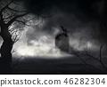 สุสาน,หินหน้าหลุมศพ,นกเรเวน 46282304