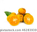 fresh orange on white background. 46283939