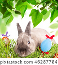 Easter bunny and Easter eggs on green grass 46287784